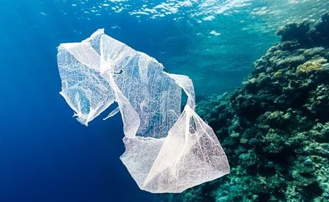 El Plástico Inteligente Oxo-Biodegradable en favor de la Descontaminación  de los Océanos provocado por el plástico convencional - BIODEGRADABLE