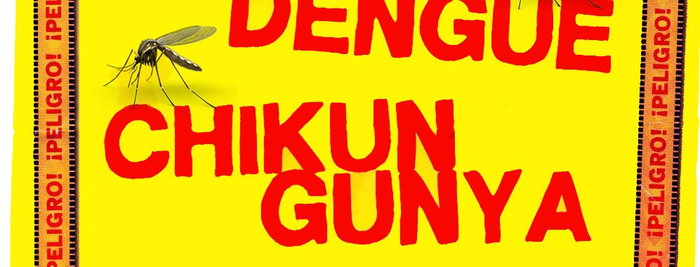ZIKA DENGUE CHIKUN GUNYA